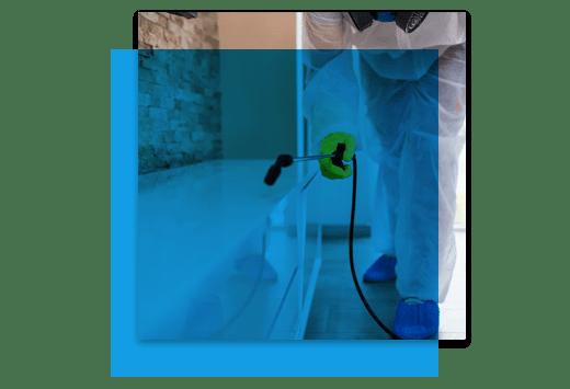 Eco Friendly Pest Control Service